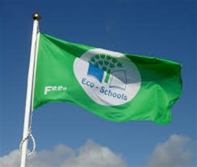 Green school flag.jpg