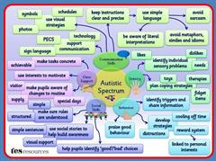 What is an Autism Spectrum Disorder?