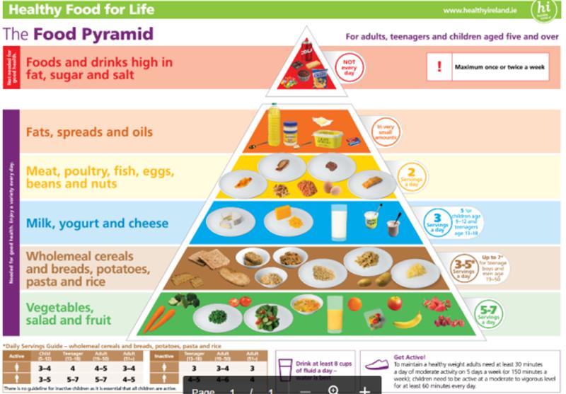 food pyramid new.png